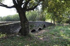 Gotický kamenný most, Leles, Košice región, Slovensko Plants, Pictures, Plant, Paintings, Planting, Planets, Clip Art