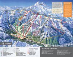 Need to go! Crystal Mountain, Country Maps, Mountain Trails, Ski Resorts, Trail Maps, Seattle Washington, Ski And Snowboard, Wishful Thinking, Map Art