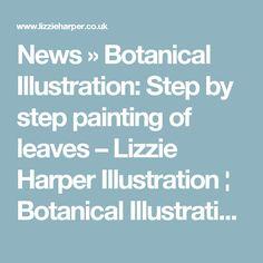 News»Botanical Illustration: Step by step painting of leaves – Lizzie Harper Illustration ¦ Botanical Illustration & Scientific Illustration by Lizzie Harper