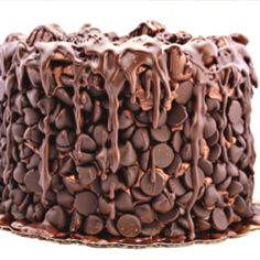 Chocolate Wasted Cake  (This is my first pin that's not a repin, so let's see if this works.) artofdessert.blog...