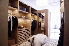 Contemporary Modern Closet: Open storage in a compartmentalized dressing area . Walk In Wardrobe, Walk In Closet, Corner Wardrobe, Wardrobe Ideas, Showroom, The Line Apartment, Loft, Lifestyle Shop, Dream Closets