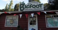 Finding Bigfoot Season Four - Surf's Up, Sasquatch Big Basin, Finding Bigfoot, My Goal In Life, Living In San Francisco, Episode Guide, Cryptozoology, Surfs Up, Pacific Northwest, Over The Years