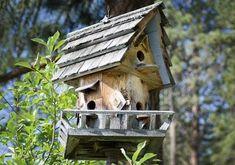 ▷ Nistkästen richtig aufhängen und Übersicht schöner Modelle - [LIVING AT HOME] Garden Landscaping, Landscape, Outdoor Decor, House, Home Decor, Beautiful Models, Backyard Patio, Asylum, Nice Asses