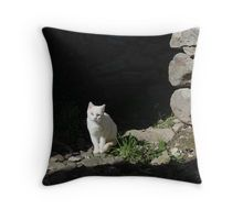 Master of old stones Throw Pillow