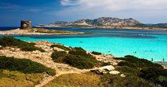 Spiaggia della Pelosa #Sardegna