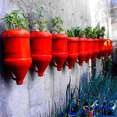 bold recycled plant containers