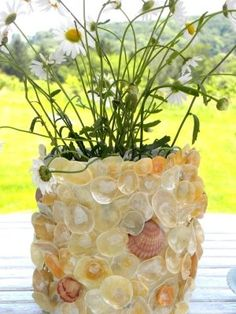Sea shell flowerpot  What to do with those shells I always seem to pick up