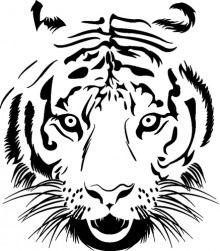 Naklejka na ścianę Tygrysia głowa