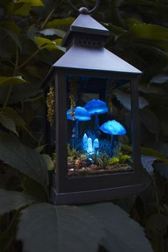 Fairy mushroom lamp by TheSnowmade Mushrooms Night Light – Blue Polymer Clay Fungi miniature – Succulent – Glow in the dark – Fairy Lanterns, Lanterns Decor, Fairy Lamp, Mini Fairy Garden, Garden Fairy Lights, Crystal Garden, Deco Floral, Miniature Fairy Gardens, Indoor Fairy Gardens