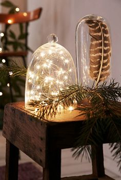 firefly string lights http://rstyle.me/n/s6rwepdpe .. cool idea to put string lights under a glass dome for christmas decor