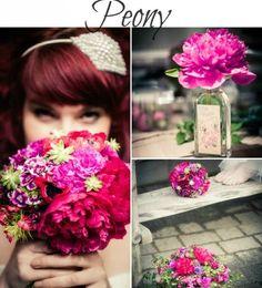 summer seasonal flowers - peony