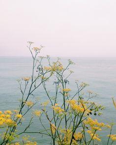 COS | Things | Melody Hansen