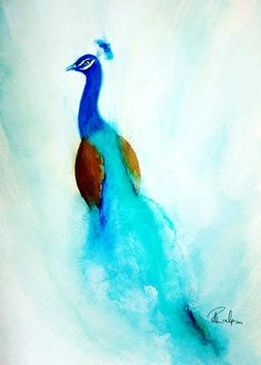 watercolor peacock - Google Search