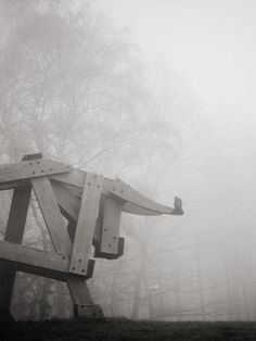 university symbol, sart tilman, fog, black and white