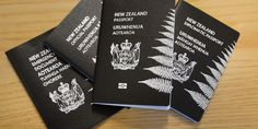 Home detention for unlicensed Porirua immigration advisor - http://businessimmigration.co.nz/home-detention-unlicensed-porirua-immigration-advisor/