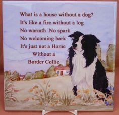 BORDER COLLIE sheepdog herding new glossy tile collectable Sandra Coen No 2 | eBay