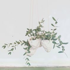 hanging planters from the object enthusiast on instagram