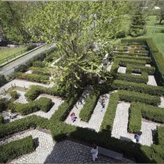 1000 Images About Gardens On Pinterest Botanical