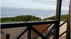Holiday Accommodation, South Africa, Beach House, Patio, Garden, Beach Homes, Garten, Lawn And Garden, Gardens
