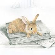 Rabbits history lesson bunny rabbit print
