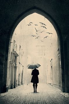 Beautiful photo of artistic elements in black & white...gothic arch, architecture, person with umbrella, birds, bricks.  Gorgeous