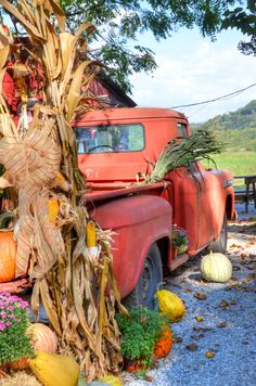 From Bryson City's Darnell Farms - we love their fall decor! #farmtotable