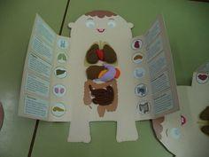 Resultado de imagen de lapbook sobre la digestion