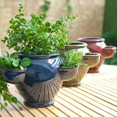 Round Ceramic Aster Strawberry Jar with 3 Pockets - Simply Planters // Great Gardens & Ideas