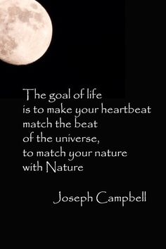 """""""The goal of life is to make your heartbeat match the beat of the universe, to match your nature with Nature."""" - Joseph Campbell, via consider this hippie 