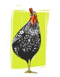 i love chickens | lindsey olivares