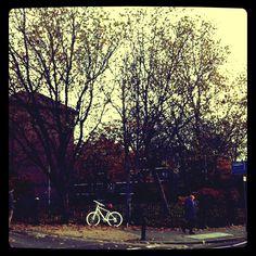 A remembrance of a tragic cyclist.