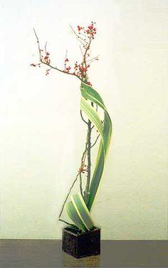 Sculptural work, tall narrow leaves & flowering quince branch combo #ikebana #zen #spring