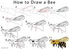 How to Draw a Bee Step by Step Drawing Tutorials with Pictures.
