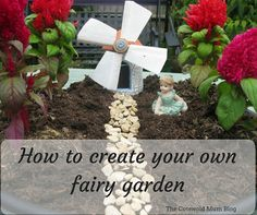 Tutorial to create a basic fairy garden Fairy Gardens, Create Your Own, Plants, Blog, Blogging, Plant, Planting, Planets