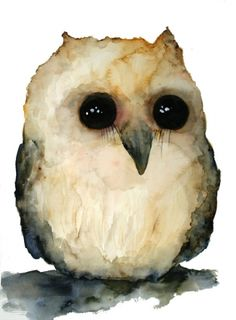 Watercolor Owl - by Swedish artist Sofie Magnusson ( I could look at him forever! Owl Watercolor, Watercolor Animals, Watercolor Paintings, Watercolors, Owl Art, Bird Art, Baby Owls, Painting & Drawing, Illustrations Posters