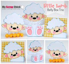 Little Lamb Belly Box Trio