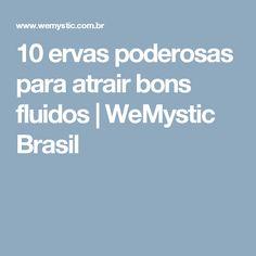 10 ervas poderosas para atrair bons fluidos | WeMystic Brasil