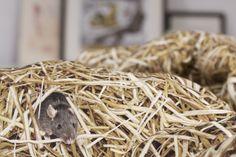 HAYKA stack of straw bedlinen by Dizeno Creative / 100% cotton satin / photorealistic print / www.hayka.eu
