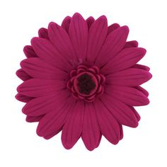Gerbera Daisy Hot Pink, 8 Count by Chef Alan Tetreault