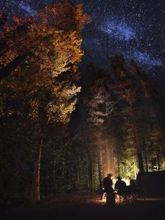 When I saw this image I immediately thought of a horror film scene in the woods. The starlight makes this image quite eerie in combination with the colors of the leaves. It also looks as if the people are going to be sucked into the woods or be attacked by someone from behind.