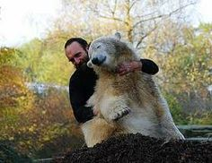 Love between Thomas and Knut.