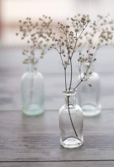 Wedding Ideas: babies-breath-simple-centerpieces This with like test tubes or beakers? Bottles And Jars, Glass Bottles, Glass Vase, Small Bottles, Small Vases, Mini Bottles, Perfume Bottles, Deco Floral, Arte Floral