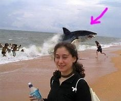 Wow. I didn't notice the giant shark in the background until they pointed it out:)