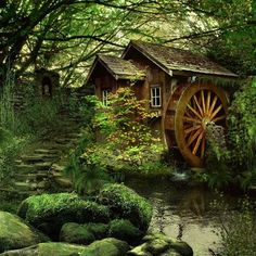 Abandoned Mill Cottage In The Woods, Cozy Cottage, Cabins In The Woods, Forest Cottage, Forest Cabin, Forest House, Garden Cottage, Beautiful Homes, Beautiful Places