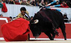 Padilla: Cuando uno se viste de torero es para entregarse al público - mundotoro.com
