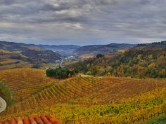 Piemont im Herbst #travel #reisen # Urlaub #vacation #Piemont #europe #italy #Italien #autumn #herbst Vineyard, Mountains, Nature, Travel, Outdoor, Italy, Fall, Vacation, Outdoors