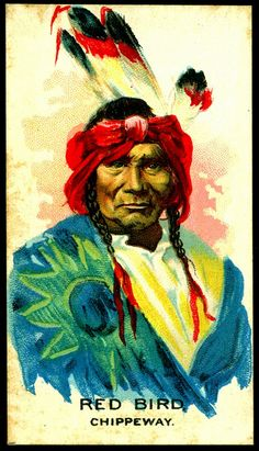 Cigarette Card - Indian Chief, Red Bird by cigcardpix