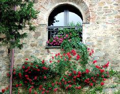 Vinci (fi) #TuscanyAgriturismoGiratola, province of Florence, Tuscany Italy