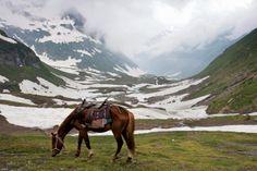 Alpine meadows of Azad Kashmir