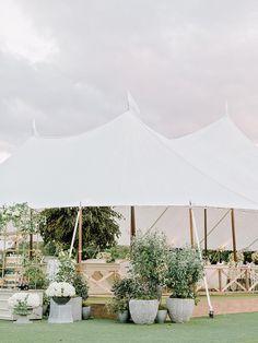 Classic Romantic Wedding, Romantic Wedding Receptions, Outdoor Wedding Decorations, Romantic Weddings, Chic Wedding, Our Wedding Day, Wedding Ideas, Wedding Inspiration, Indoor Wedding